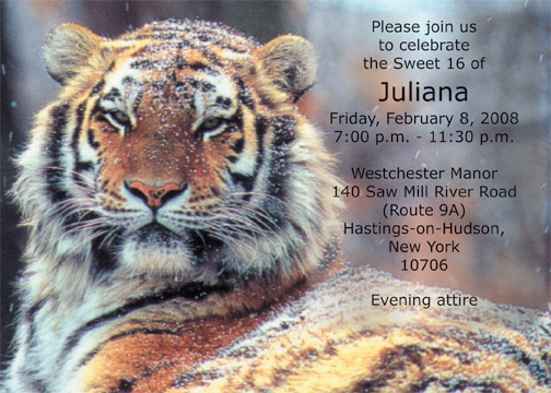 Tiger Birthday Party Invitations Image Of Tiger Stateimage Co