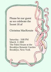 Sweet Fifteen Invitations Quinceanera
