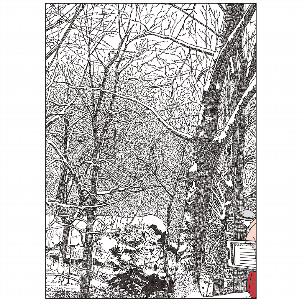 Back Cover of Christmas Holiday Card Winter in the Park 2