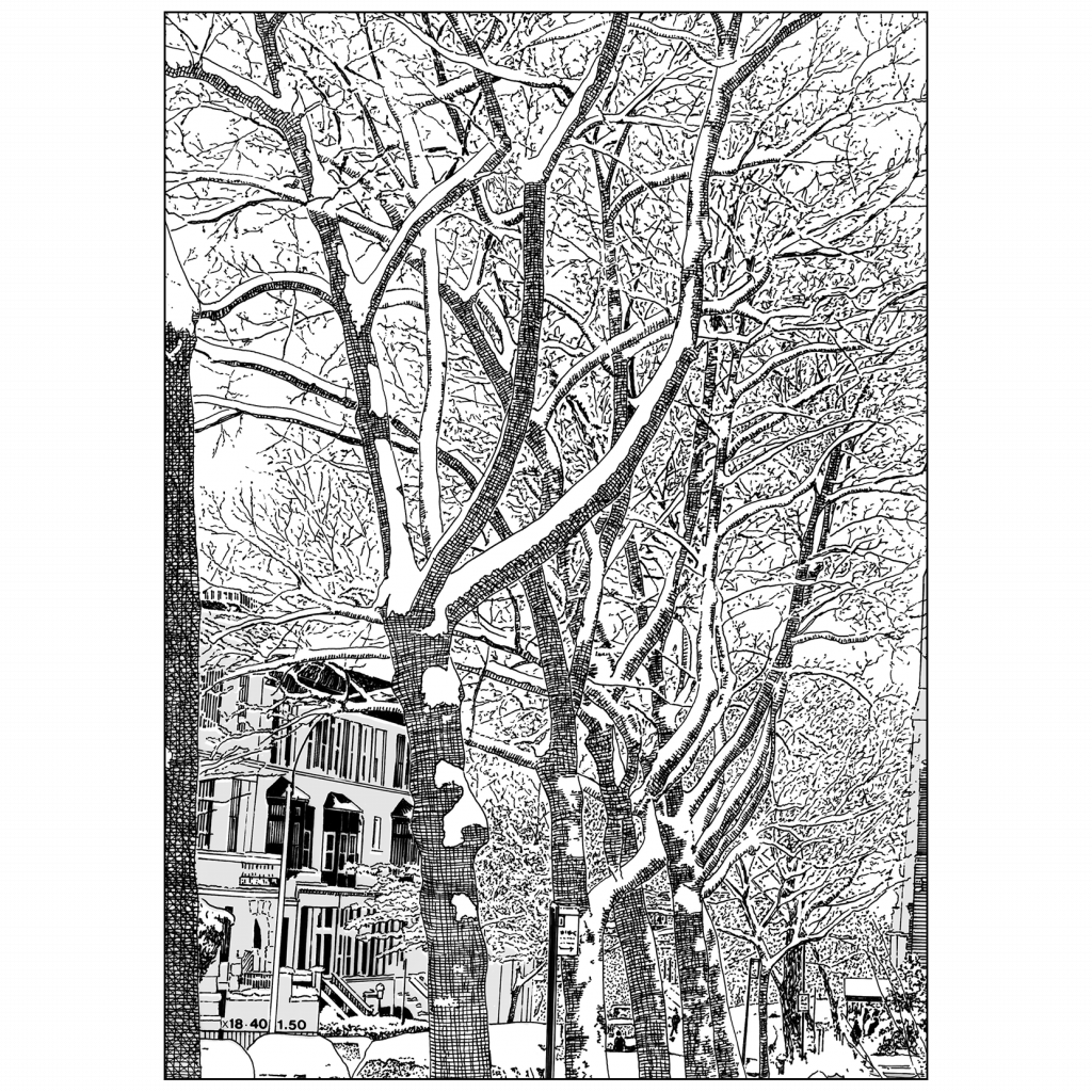 Back of Christmas Holiday Card Brownstone Winter VII